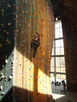 Plastic Paradise: Stay in shape at indoor climbing gyms