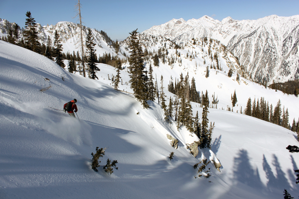 Adam skis a fresh line in White Pine.