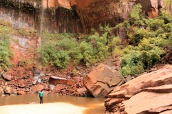 A hiker checks out Upper Emerald Pool in Zion National Park.