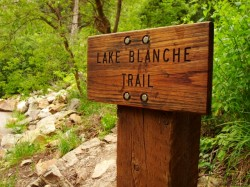 A wood sign marks the Lake Blanche trail head and is the beginning of the journey to the Sundial