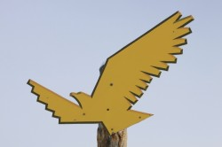 The Solitude Golden Eagle may soon be replaced by something else that flies - a metal box on cables.