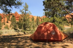 Shady campsites surrounded by red rock cliffs is what you can expect at Red Canyon Campground. (Photo: Jared Hargrave - UtahOutside.com)