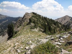 Tuscarora's summit viewed from the ridge. The foot trail can be seen in the bottom left of this photo. (Photo: Ryan Malavolta - UtahOutside.com)