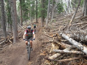 Swooping singletrack in thick pine forests makes a descent on Pinecone Ridge Trail one of the most fun in the Wasatch. (Photo: Jared Hargrave - UtahOutside.com)