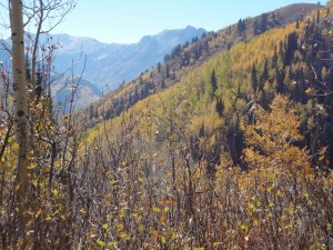 Wasatch views are outstanding during the hike to Desolation Lake. (Photo: Ryan Malavolta - UtahOutside.com)