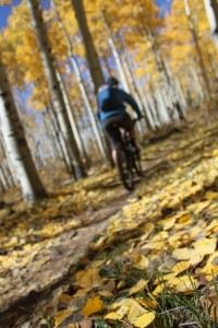 Fall is an awesome time to mountain bike The Whole Enchilada, for obvious reasons. (Photo: Jared Hargrave - UtahOutside.com)