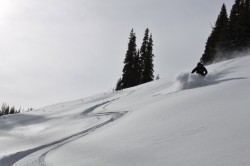 Skiing 8 inches of new snow at Wolf Creek Pass. Skier: Adam Symonds. (Photo: Jared Hargrave - UtahOutside.com)