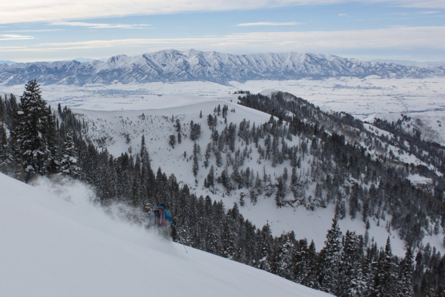 Skiing with a view - Adam Symonds make powder turns on Logan Peak. (Photo: Jared Hargrave - UtahOutside.com)