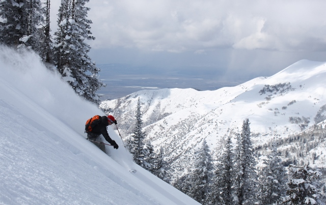 Chris Brown rips that choice line off the summit of Millville Peak. (Photo: Jared Hargrave - UtahOutside.com)