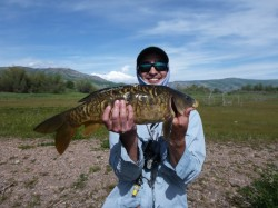 Another Pineview carp caught in the flats on the lower east side. Angler: Nathan Macheel