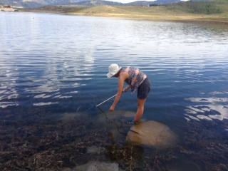 Crawdad fishing tips at strawberry reservoir for Strawberry reservoir fishing