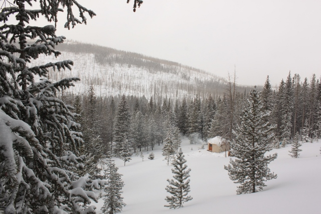 The Boundary Creek Yurt is nestled amongst evergreen trees at the base of a perfect ski zone that fall on the north slopes of an unnamed peak. (Photo: Jared Hargrave - UtahOutside.com)