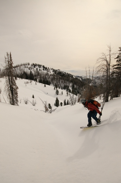 Zach Scribner enters a natural halfpipe on the back side of Fox Peak. (Photo: Jared Hargrave - UtahOutside.com)