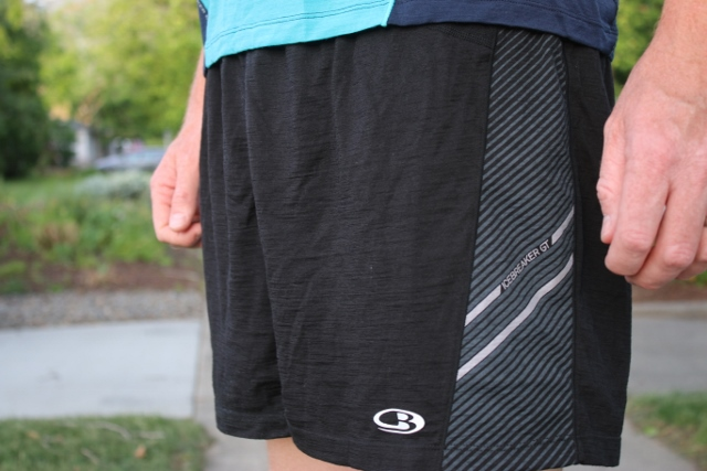 Icebreaker Mens Strike Support Shorts