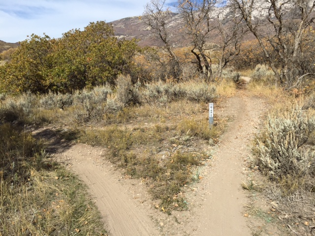 Junes Bottom Trail on the Green River -