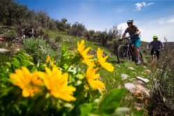 Spring is a great time to mountain bike in Park City, especially when conditions are on point. (Photo: Mike Schirf)