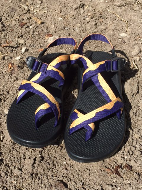 b887fee45c3d Limited edition Chaco Z2 sandals with Bears Ears webbing to benefit  non-profits who defend Bears Ears National Monument.